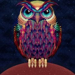 owl 2 b copy s