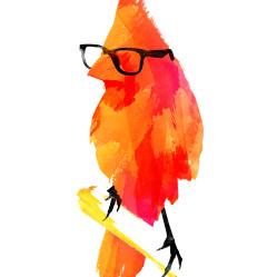 punk_bird_big