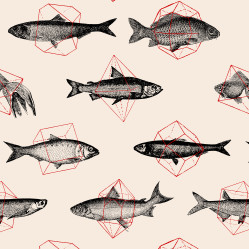 Fishes in Geometrics I