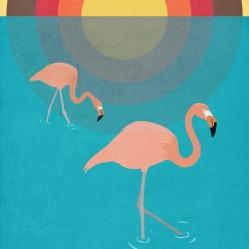 flamingoshq