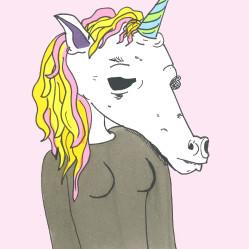 The Marvelous Unicorn
