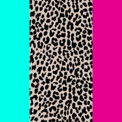 Leopard National Flag