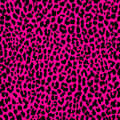 Neon Pink Leopard