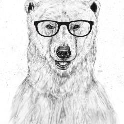 geek_bear