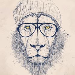 cool_lion