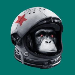 Astro Chimp