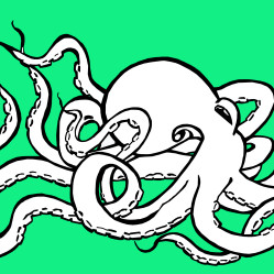 OctopusInMotion