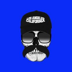 skull-cal-b-PILLOW