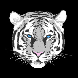 TIGER-black-PILLOW